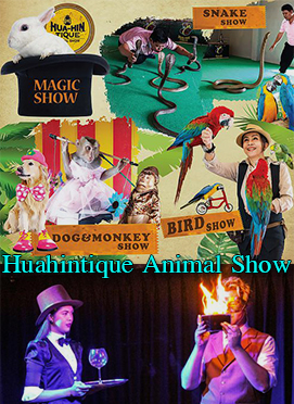 Huahintique Animal Show